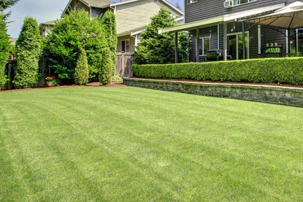 Home in Bloomington, IL with lawn service from J.T. & Sons Lawn Care.