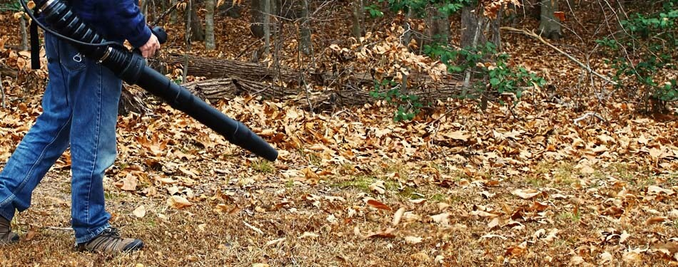 Leaf blowing in Bloomington, IL fall cleanup services.