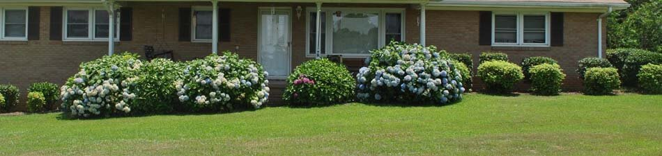 Home with trimmed shrubs and hedges in Normal, IL.
