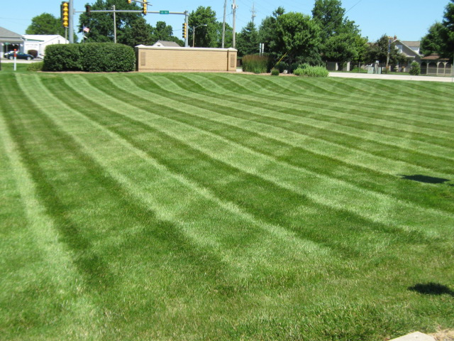 Commercial property in Normal, IL mowed by J.T. & Sons Lawn Care.